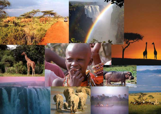 african-montage